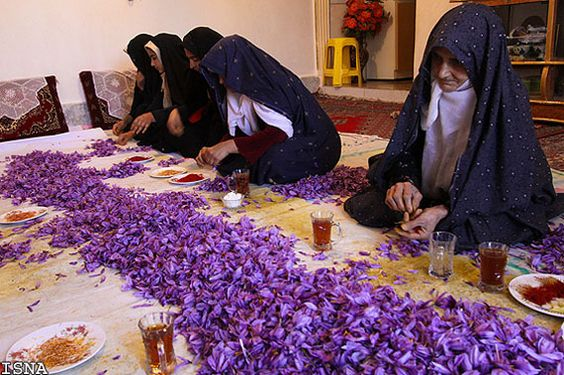 Nhụy hoa nghệ tây, nhuy hoa nghe tay